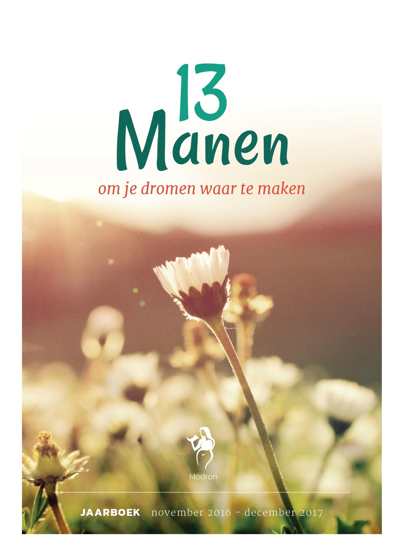 Modron Jaarboek 2017