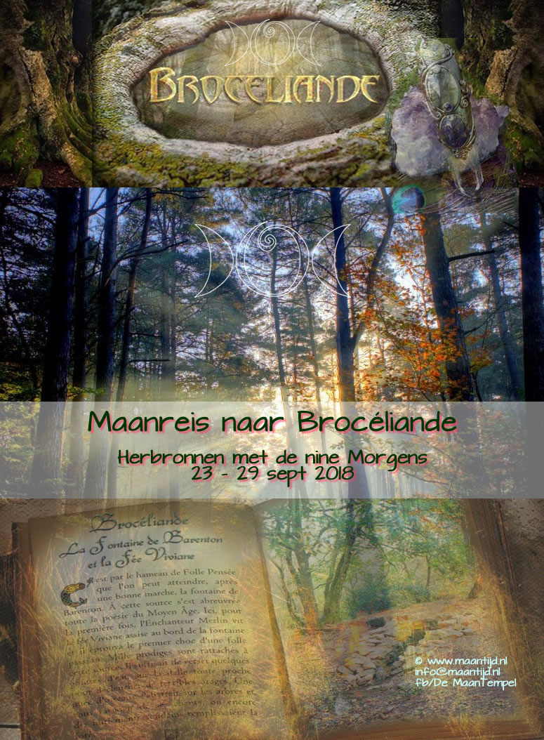 maanreis-broceliande